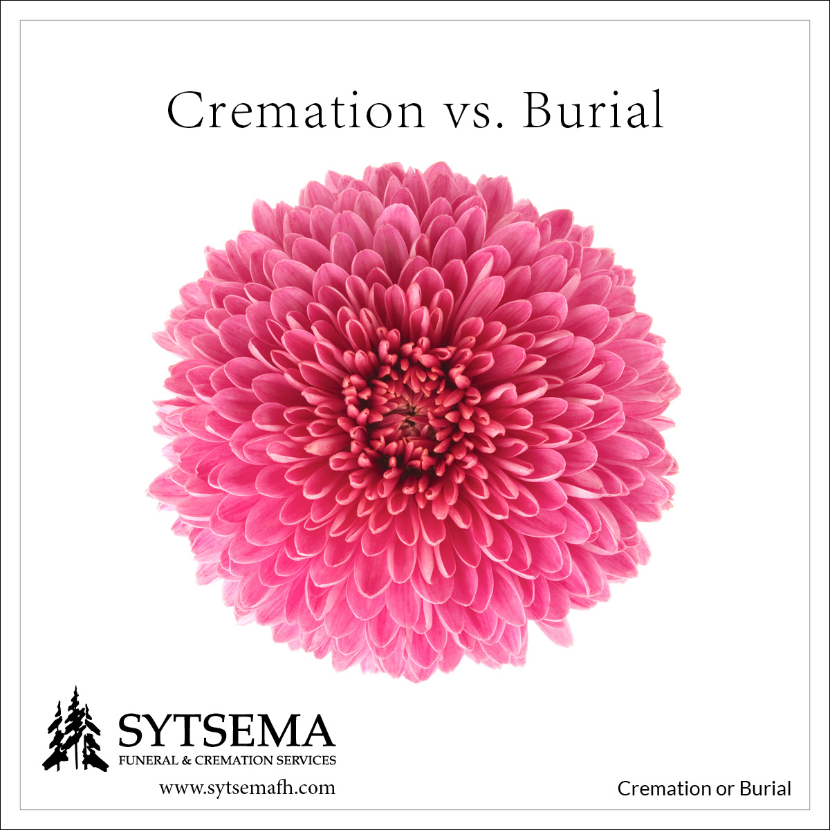 Cremation or Burial … is That the Question?